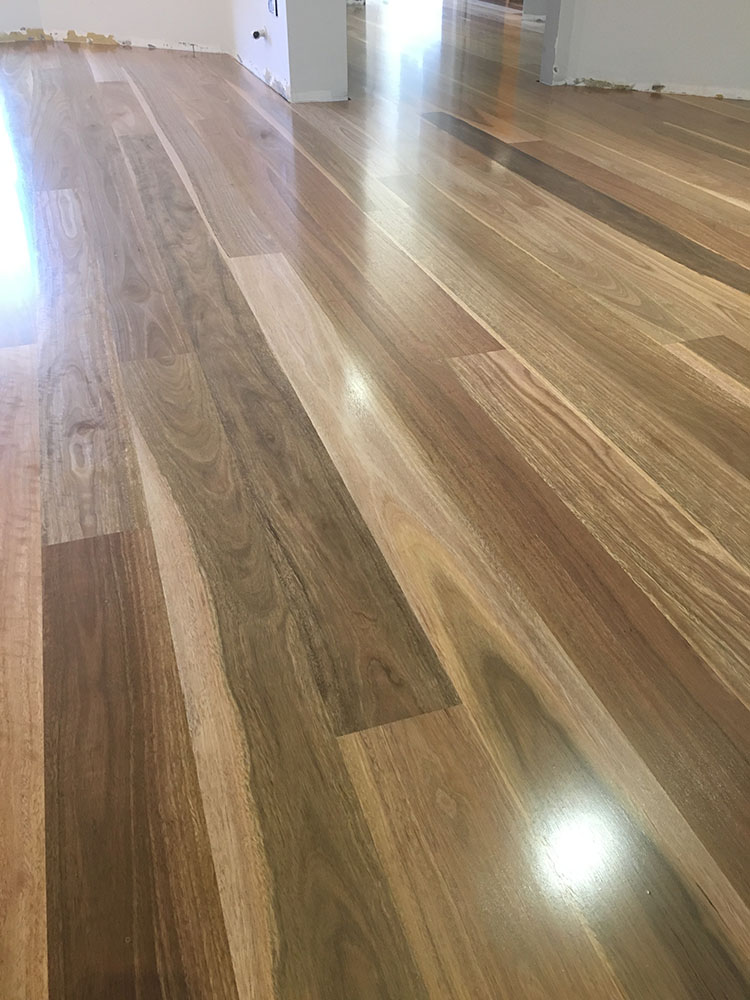 Spotted Gum Artistic Timber Flooring